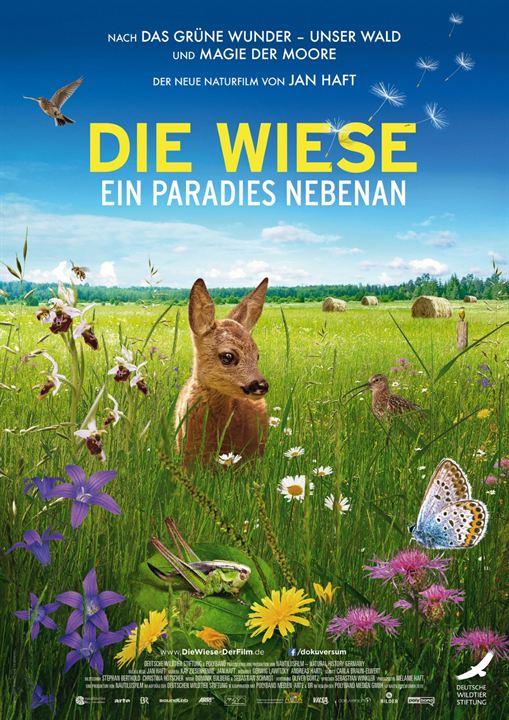 Die Wiese - Ein Paradies nebenan : Kinoposter