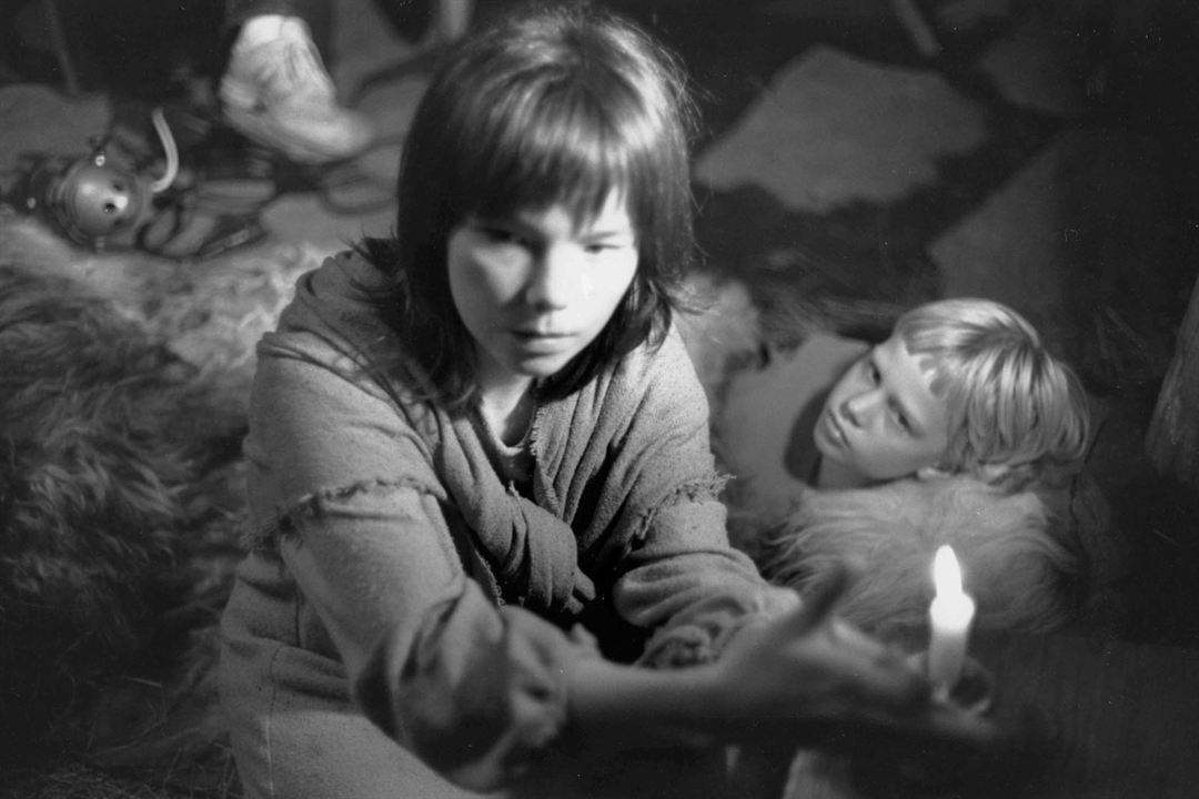 Einitréð : Bild Björk, Bryndis Petra Bragadóttir