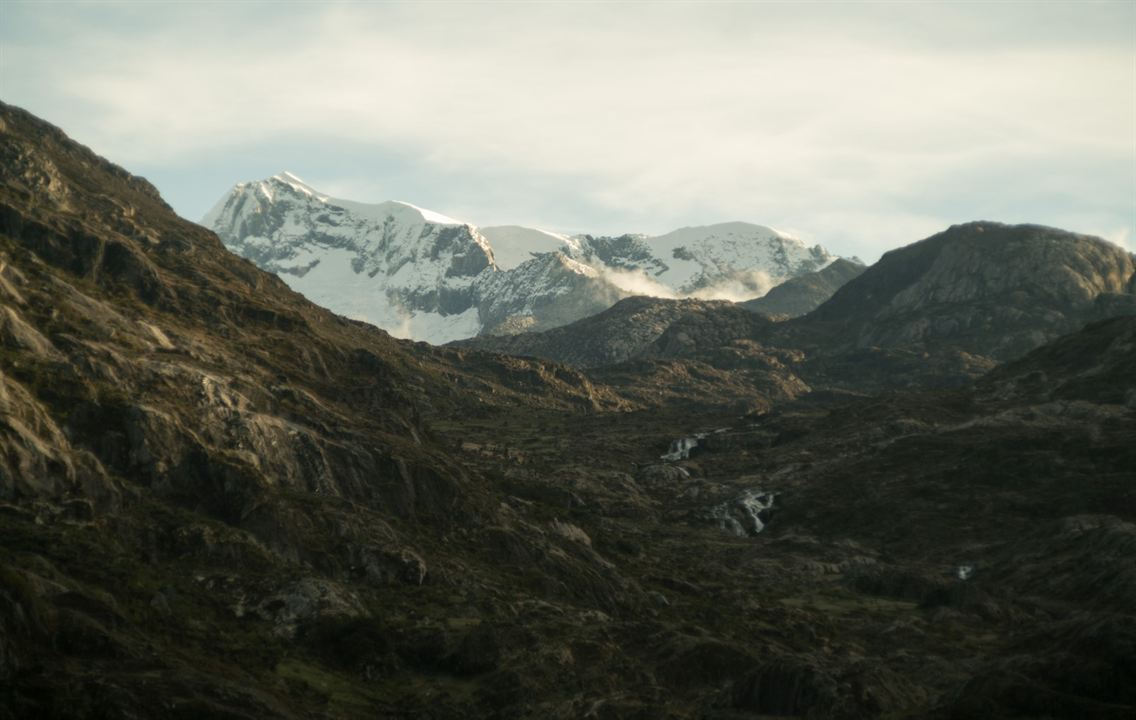 Thinking Like A Mountain : Bild