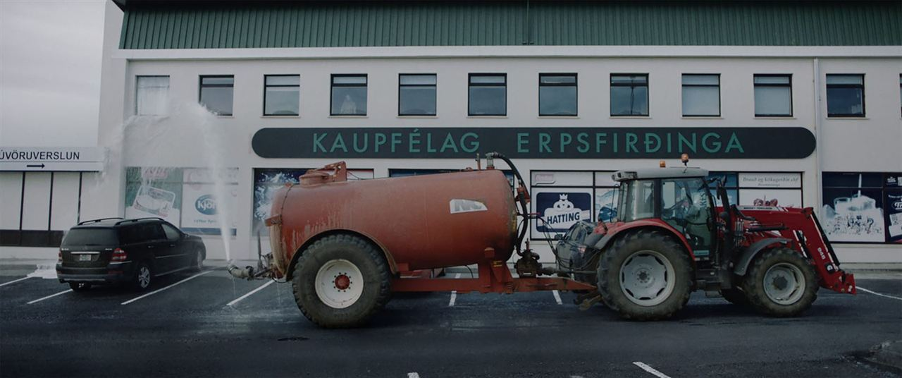 Milchkrieg in Dalsmynni : Bild
