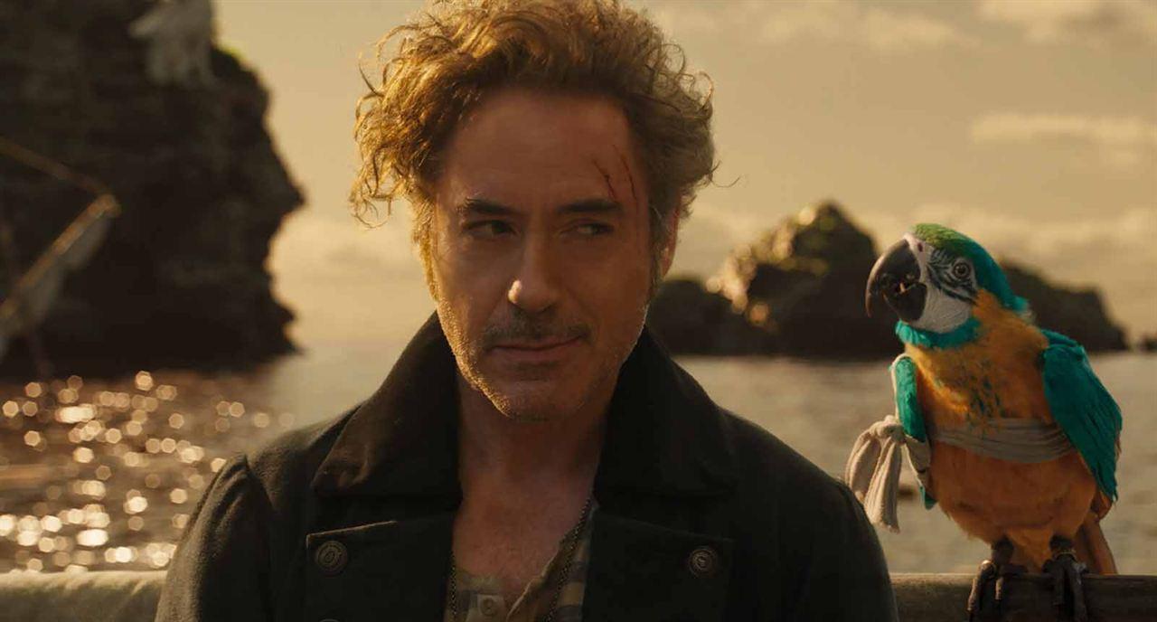 Die fantastische Reise des Dr. Dolittle : Bild Robert Downey Jr.