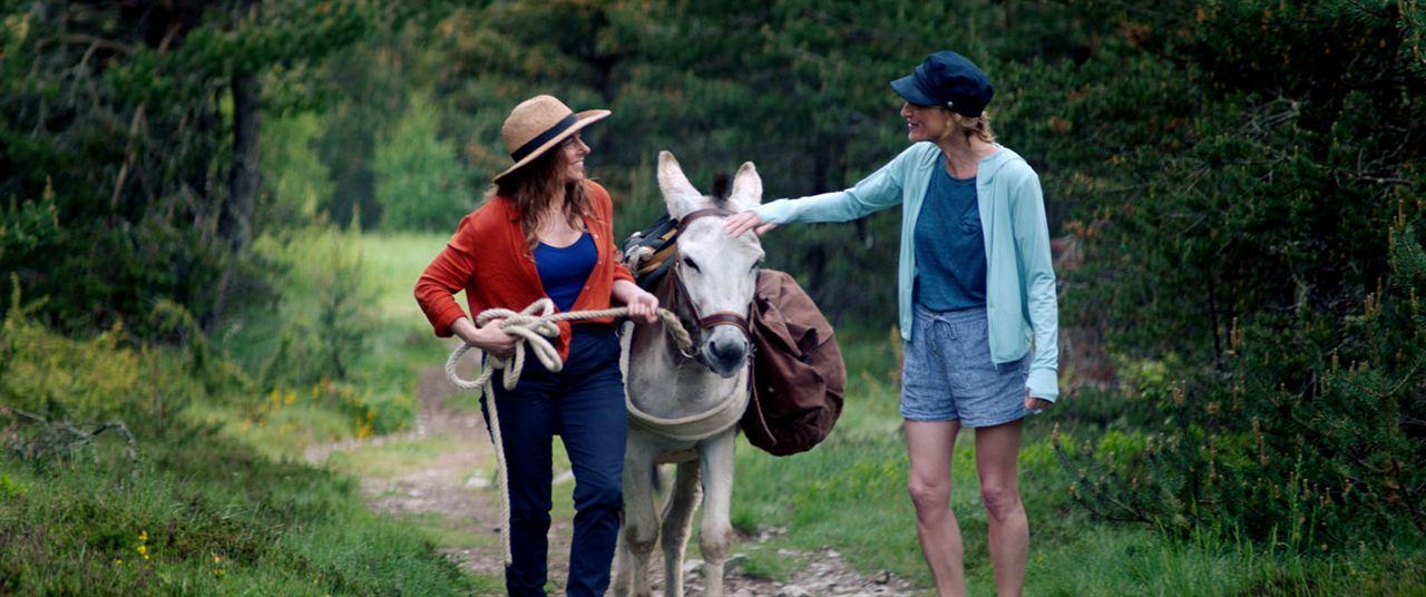 Mein Liebhaber, der Esel & Ich : Bild Laure Calamy, Olivia Côte