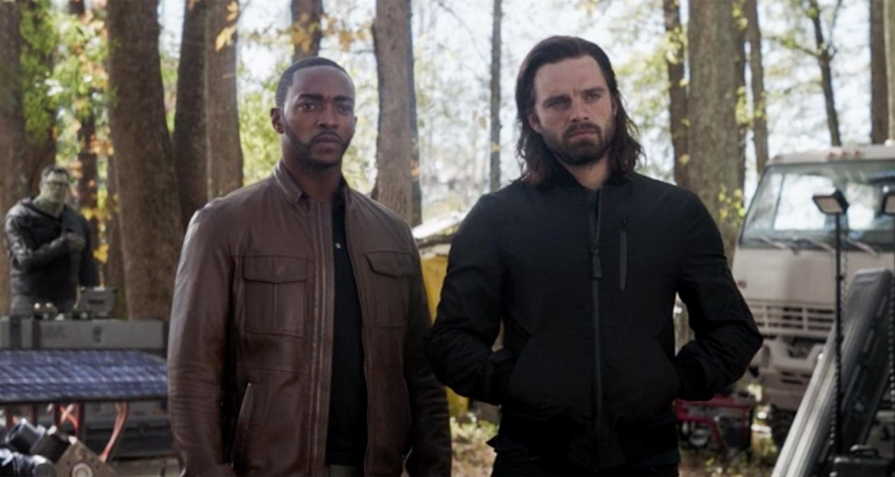 The Falcon And The Winter Soldier : Bild