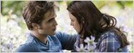 """""""Twilight 4""""-Regisseur gesucht: Coppola, Condon und Van Sant im Gespräch"""