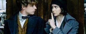 """Eddie Redmaynes Figur im """"Harry Potter""""-Spin-off """"Phantastische Tierwesen und wo sie zu finden sind"""" hat ein dunkles Geheimnis"""