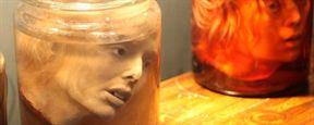 """Mit Haut, Haar, Kopf und Kragen: Im Trailer zum Horror-Slasher """"Skin Collector"""" sammelt ein Killer grausige Trophäen"""