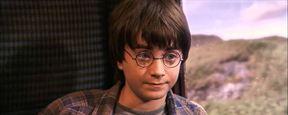 Harry Potter: Dieses hüpfende Easter Egg schließt einen großartigen Rahmen um die gesamte Filmreihe (und ihr habt es bestimmt verpasst)