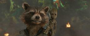 """Rocket in """"Avengers 4"""": Komik und Tragik in einem Waschbär"""