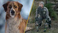 """Video zu """"Ruf der Wildnis"""": So albern sahen die Dreharbeiten mit CGI-""""Hund"""" aus"""