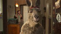 """Mit Marvel-Erfahrung und einem Tarantino-Darsteller: So entstand der """"Die Känguru-Chroniken""""-Star"""