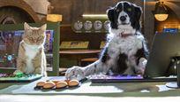 """Pfoten vereint und bald im Kino! Deutscher Trailer zu """"Cats & Dogs 3"""""""