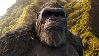 """Erfolgreicher als """"Tenet"""": """"Godzilla Vs. Kong"""" ist der bislang größte Hollywood-Hit der Pandemie"""