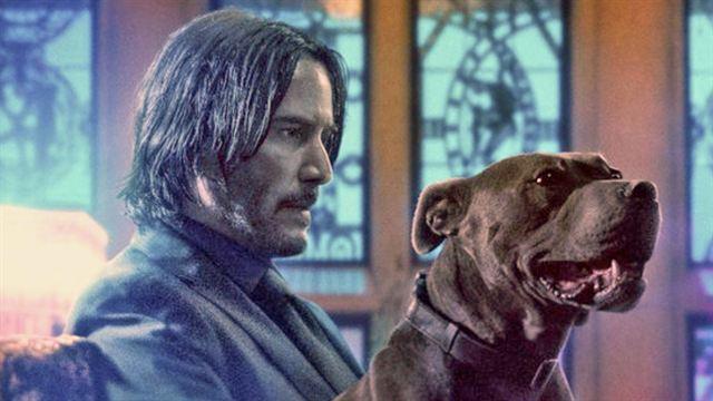 """Auf """"John Wick 3"""" folgt """"John Wick 4"""": Killer-Action mit Keanu Reeves geht weiter!"""
