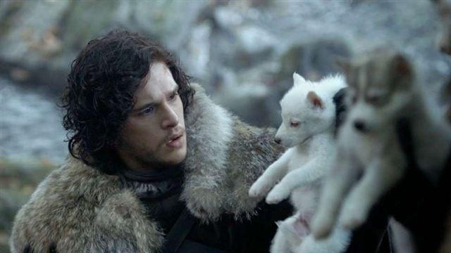 Game Of Thrones Schattenwölfe