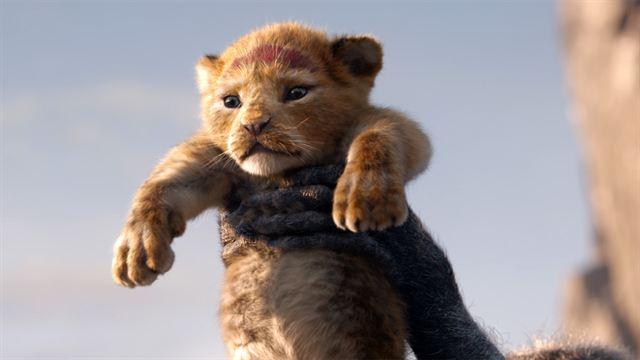 US-Kinocharts: Quentin Tarantino kriegt den Löwen nicht klein