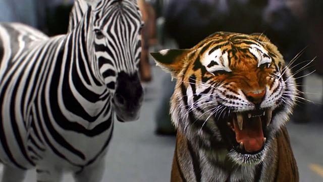zoo staffel 2
