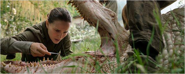 """""""Auslöschung"""": Natalie Portman im deutschen Trailer zur Roman-Verfilmung des """"Ex Machina""""-Regisseurs"""