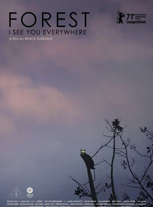 Forest - I See You Everywhere