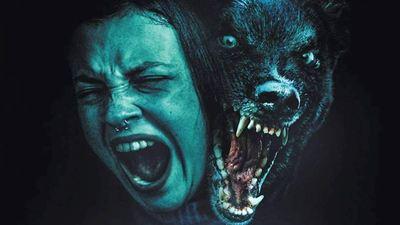 """Gnadenloser Tierhorror und beklemmendes Kammerspiel: Der deutsche Trailer zu """"Growl"""" verspricht einen würdigen """"Cujo""""-Nachfolger"""