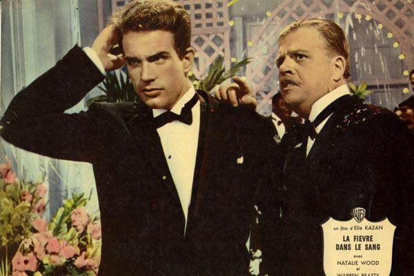 Fieber im Blut : Bild Elia Kazan, Pat Hingle, Warren Beatty