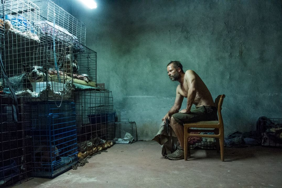 The Rover: Guy Pearce