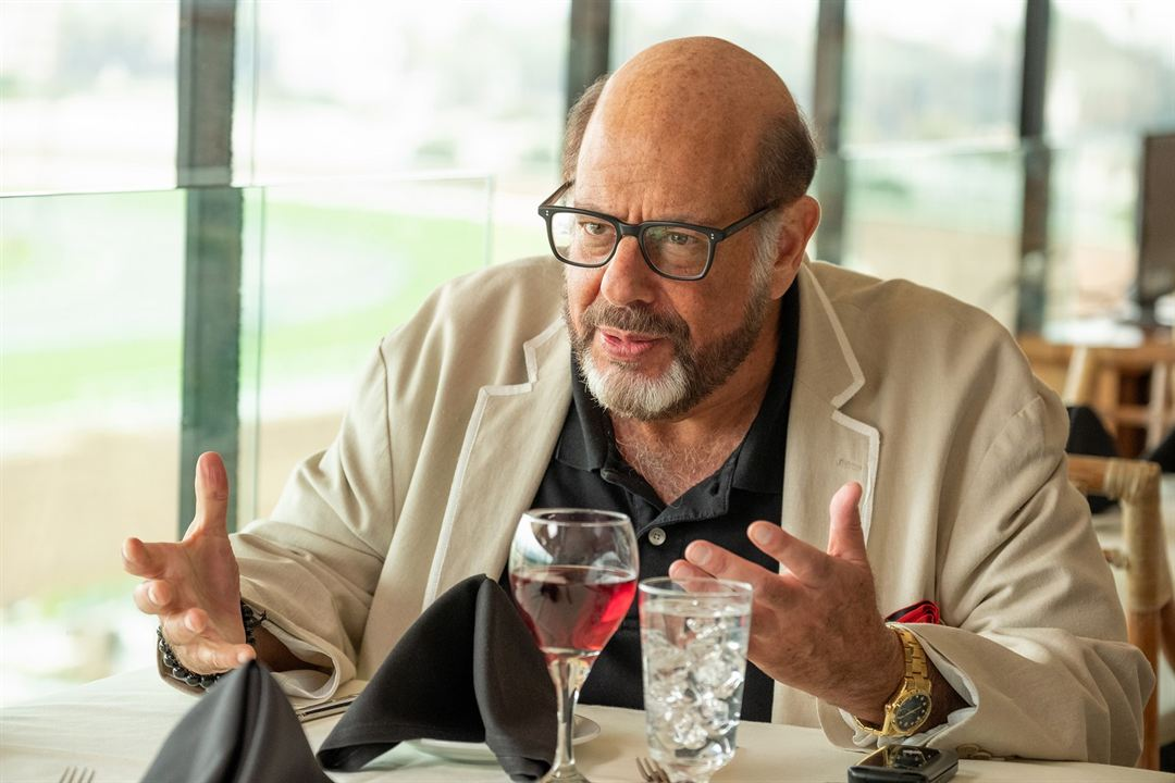 Lying and Stealing : Bild Fred Melamed